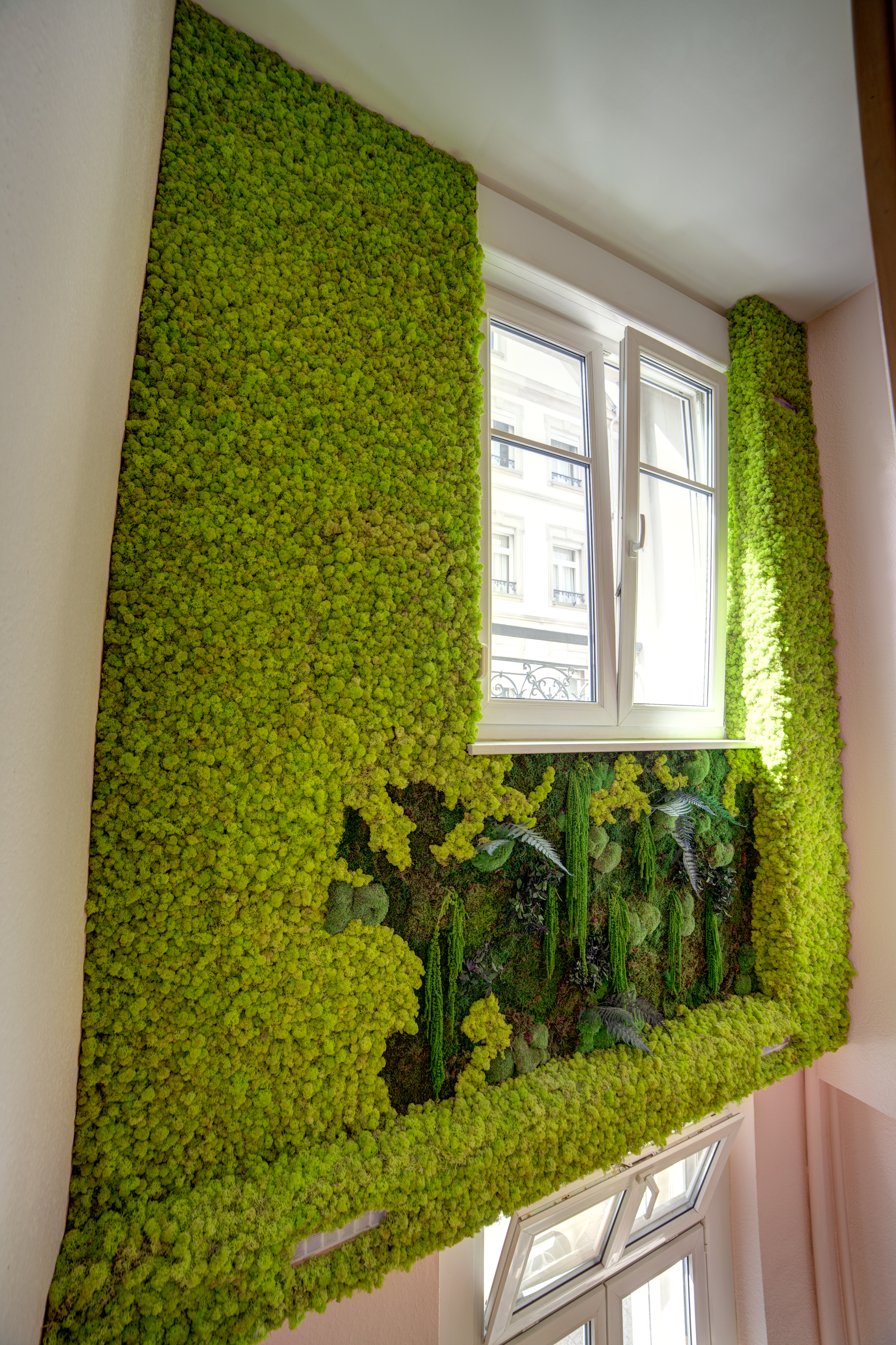 Mur végétal stabilisé en mousse | Location de plantes vertes .com